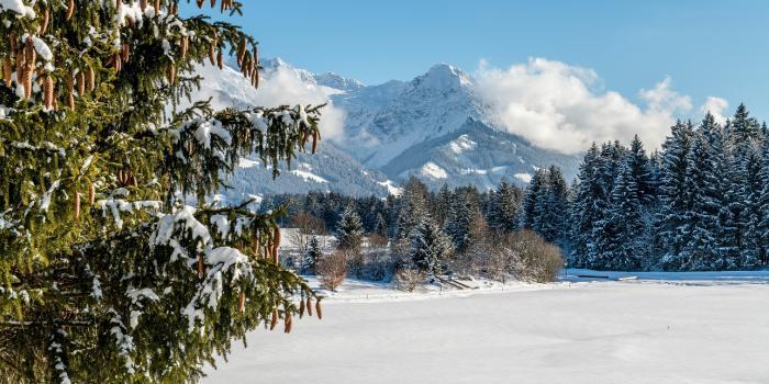 Winterwanderung zur Wittelsbacher Höhe