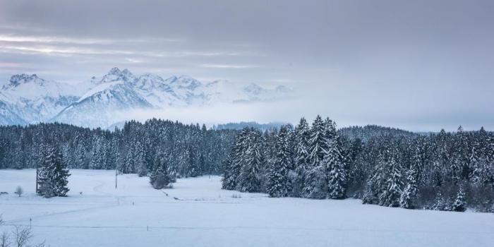 Winterwanderung um das Tiefenberger Moor von der Sonnenalp
