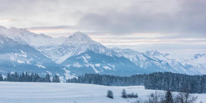 Winterwanderweg rund ums Ofterschwanger Horn