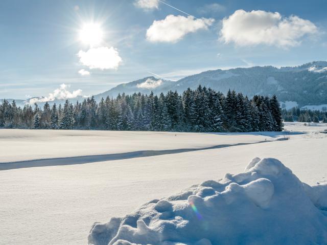 Naturverliebt Winter – 5 Nächte